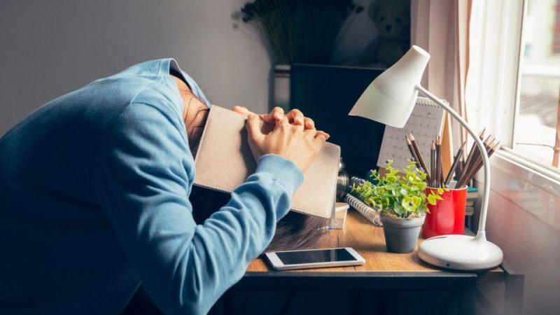 Entrevista para o Portal Vida Link: Impactos do home office no bem-estar dos colaboradores!