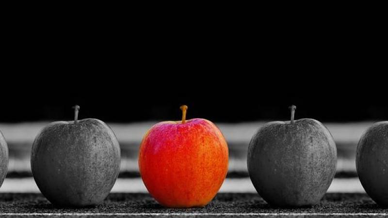 Algumas atitudes que podem prejudicar sua imagem em uma empresa